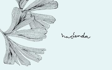 Hacienda | Re-public
