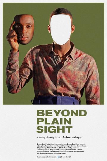 2014 — Beyond Plain Sight - Andrea Evangelista