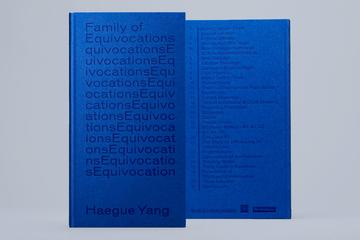 Family of Equivocations, Haegue Yang - OK-RM