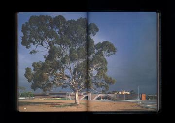 Stuart Geddes: Work