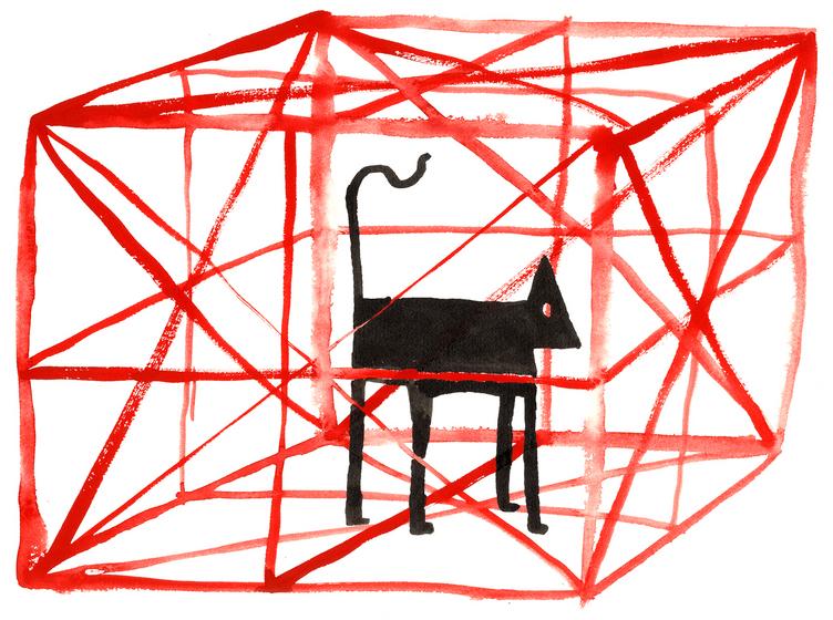 Cat In A Box – Chris Bianchi – Illustrators & Artists Agents – Début Art