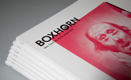 #25 Wahnsinn | Boxhorn Magazin