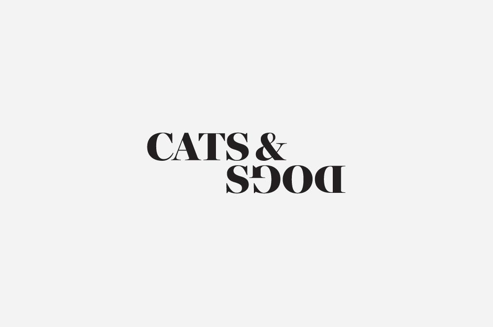 Javas Lehn | Cats & Dogs