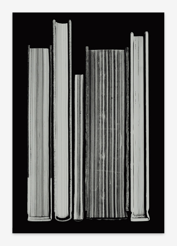 Kunstmonografien 2012 : B & R Grafikdesign