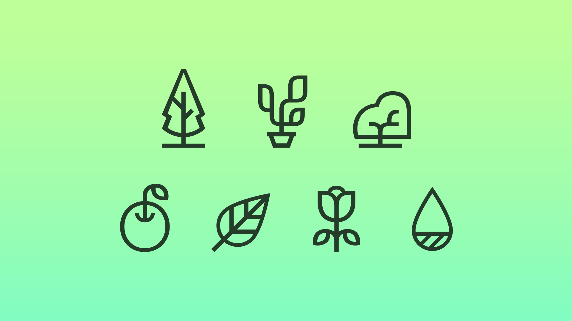 Plantsss - AWAYO