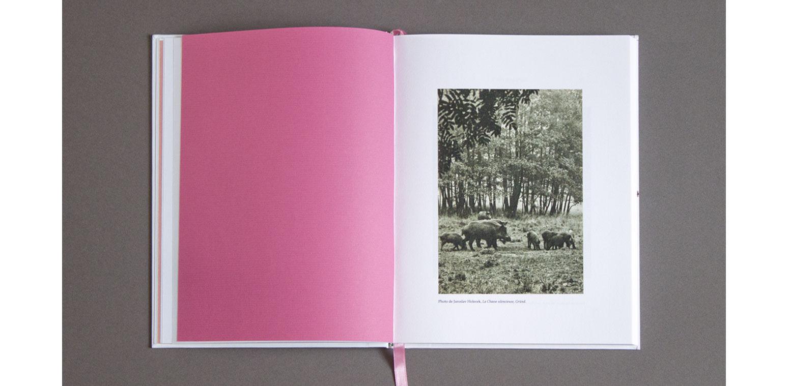 Zoo, Le cabinet naturaliste