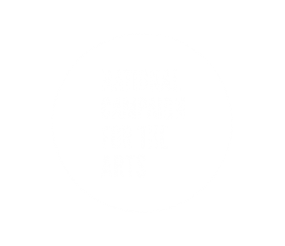Conor & David - National Campaign for the Arts