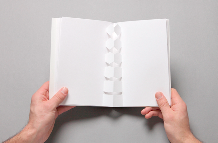 Zigmunds Lapsa / graphic design & illustration / Colour Tales