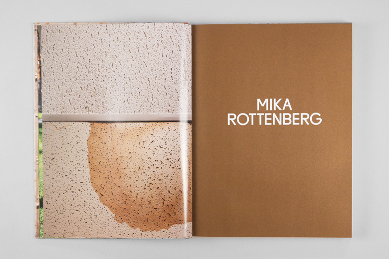 Project Projects — Mika Rottenberg
