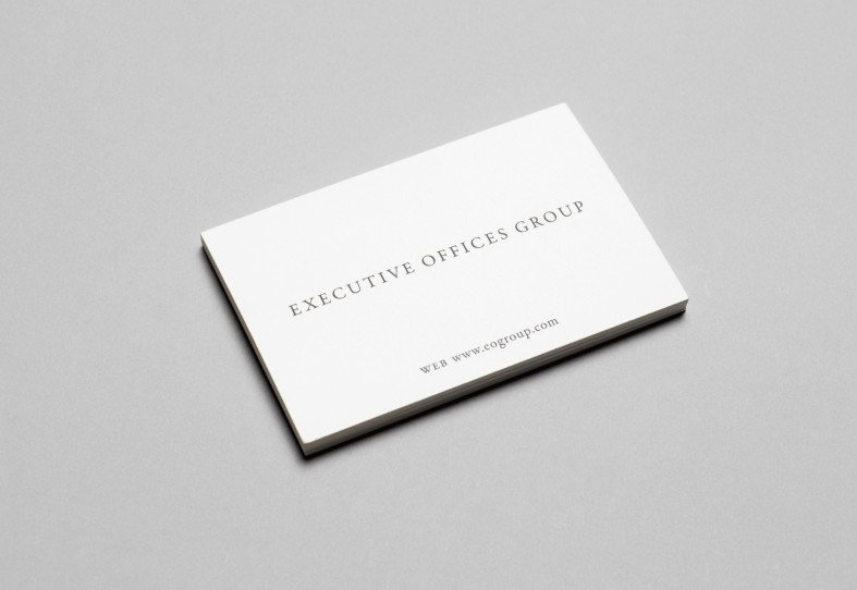 Nelson Associates / Executive Offices Group