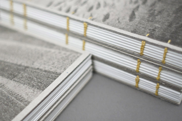 Walrus journals - Working Format