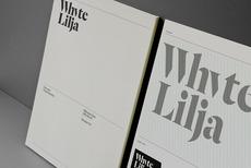 Logo & Branding: Whyte Lilja « BP&O – Logo, Branding, Packaging & Opinion by Richard Baird