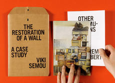 The Restoration of a Wall | Isabelle Vaverka