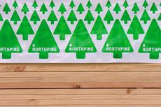Northpine. Brand Positioning, Web Design, Packaging, Brand Launch. Everything Design. Auckland, New Zealand.