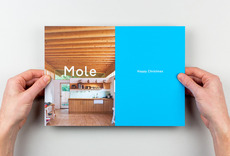 Mole Architects Christmas card 2011