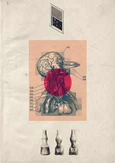 Forgotten-hopes.com, blog de graphisme, culture retro et vintage » Matija Drozdek