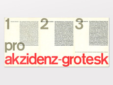 Display | Berthold Akzidenz Grotesk Type Speciman | Collection