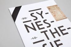 Ill Studio - Synestesie