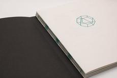nico bats - communication design - Polygon