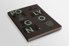 nico bats - communication design - Polygon