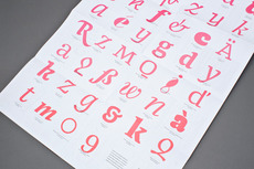 Type and Media 08/09 - Working Format