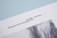 In the Wake - Elana Schlenker