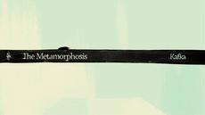 Metamorphosis | Buck