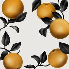 Love Naranjas / 2012 - Borja Bonaque