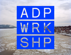 ADP Workshop - Elana Schlenker