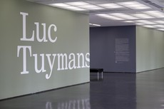 Luc Tuymans Title Wall | Scott Reinhard