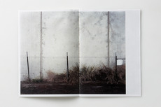 Holt — Publishing