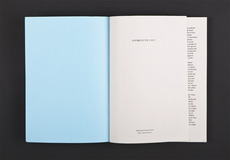 David Ortiz | A Stake in the Land | editorial design, book