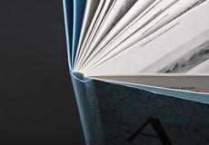 David Ortiz | A Stake in the Land | editorial design, book