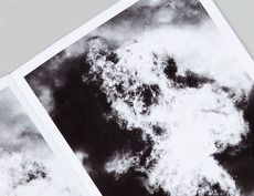 Jochen Lempert – Recent Field work — Carvalho Bernau