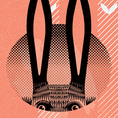 Botto Arts » New Year 2011 – Year of the Rabbit