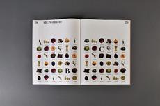 Iris Tarraga. Graphic Designer