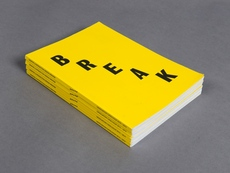 Floris van Driel – Graphic Design / Break Catalogue