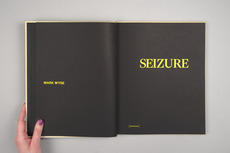 Project Projects — Mark Wyse: Seizure