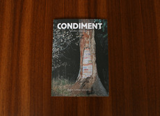 condiment_1.jpg (800×582)