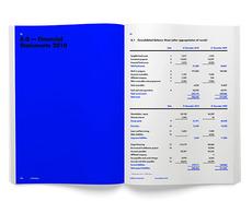 Rejane Dal Bello - OVG - Annual Report
